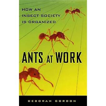 Ants at Work How an Insect Society Is Organized by Gordon & Deborah