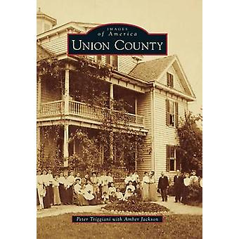Union County by Peter Triggiani - Amber Jackson - 9781467114288 Book