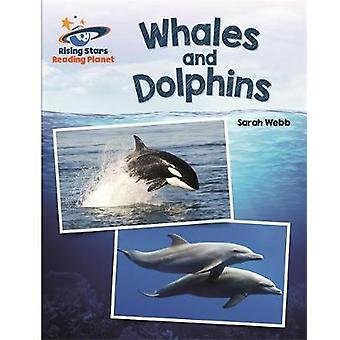 Reading Planet - Whales and Dolphins - White - Galaxy by Sarah Webb -
