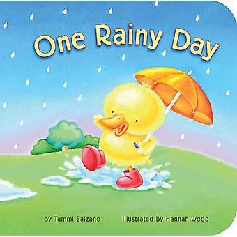 One Rainy Day by Tammi Salzano - Hannah Wood - 9781589258600 Book