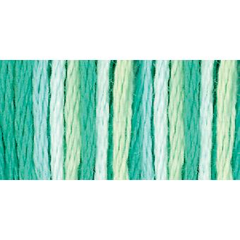DMC Farbvariationen sechs Strang Embroidery Floss 8,7 Yards Seerosen 417F 4040