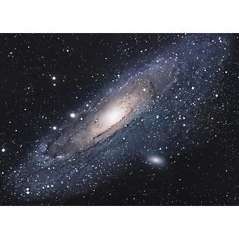 The Andromeda Galaxy Poster Print