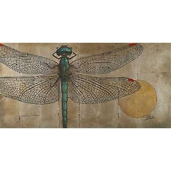 Dragonfly on Silver Poster Print by Patricia Pinto
