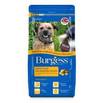 Burgess fri for kunstige farver og smagsstoffer rige i kylling 2,5 kg