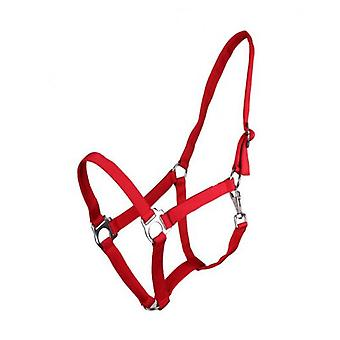 QHP Adjustable Red Pony Bridle (Horses , Pony world , Bridles and reins)