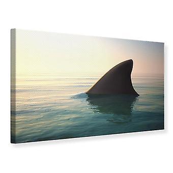 Aleta de tiburón impresión de lienzo