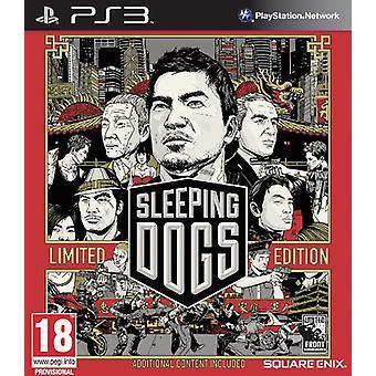 Sleeping Dogs - gelimiteerde editie (PS3)