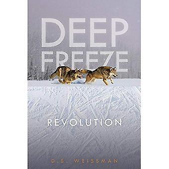 Revolution #4 (Deep Freeze)
