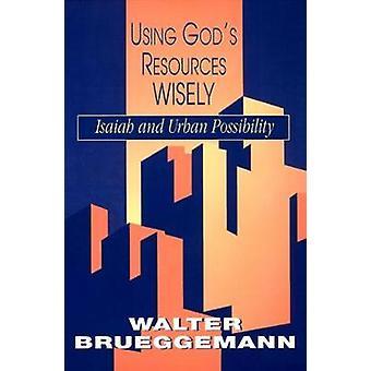 Utilizando recursos de dioses sabiamente por Brueggemann y Walter