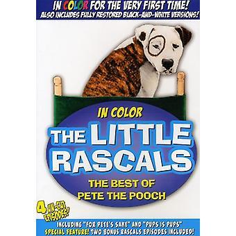 Lille slyngler - den lille slyngler: The Best af Pete Pooch [DVD] USA importerer