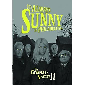 It's Always Sunny in Philadelphia: Comp Season 11 [DVD] USA import