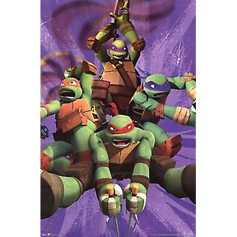 Teenage Mutant Ninja Turtles - Team Poster Print