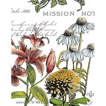 Ботанический Открытка цвета Ii плакат печать, Мари Элен Кассоном