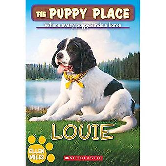 Louie (Place chiot)