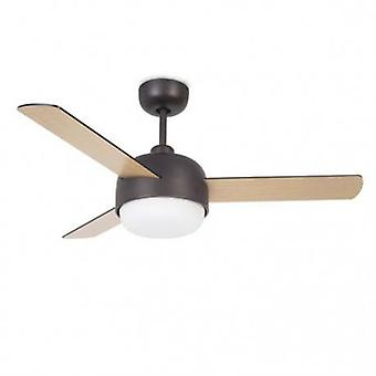 2 Light Copper Ceiling Fan Brown