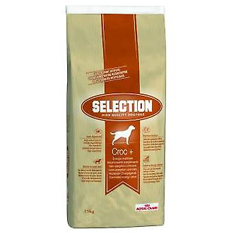 Royal Canin Selection HQ Croc+ Adult (Dogs , Dog Food , Dry Food)