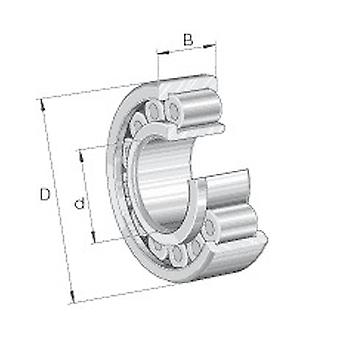 INA SL192311-XL Cylindrical Roller Bearing