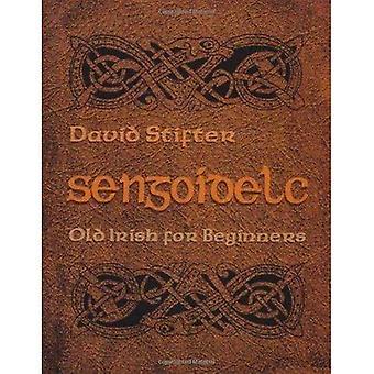 Sengoidelc: vieil irlandais pour les débutants (études irlandaises): vieil irlandais pour les débutants (études irlandaises)