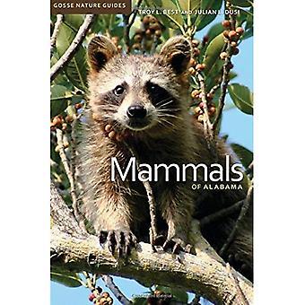 Mammifères de l'Alabama (Gosse Nature Guides)