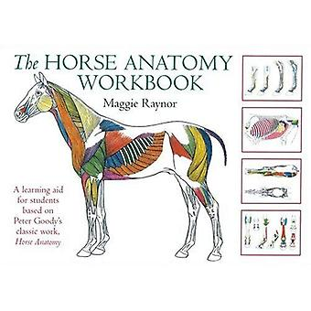 Horse Anatomy Workbook (Allen Student)
