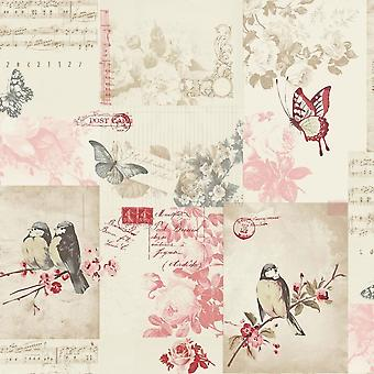 Songbird Wallpaper animaux oiseaux Nature Collage fleurs Floral canneberge Holden