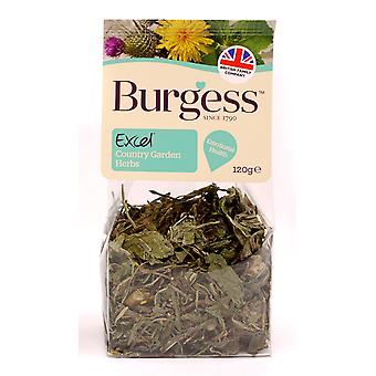 Burgess Excel Snacks Country Garden Herbs 120g (Pack of 5)