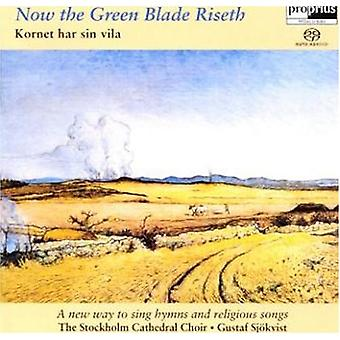 Kornet Har Sin Vila - Now the Green Blade Riseth [SACD] USA import