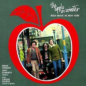 Conway/Demarco - Apple in Winter [CD] USA import