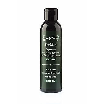 Shampoo for men For all hair types with mint and lime.
