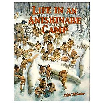 Life in an Anishinabe Camp (Native Nations of North America)