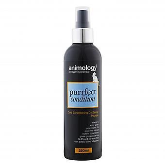 Animology Purrfect tilstand kat frakke Conditioning Spray Papaya 250ml (pakke med 4)