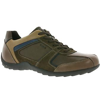 GEOX U Pavel B shoes men's genuine leather sneaker Braun with TÜV