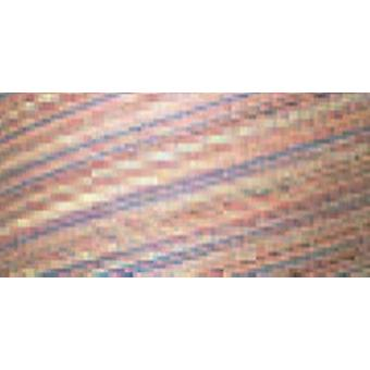 Cotton Variegated Colors 700 Yards Victorian 41 Sm006