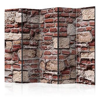 مقسم الغرف-خمر الجدار الثاني [غرفة المقسمات]