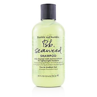Bumble and Bumble Bb. Seaweed Shampoo (fint till Medium hår) 250ml/8,5 oz