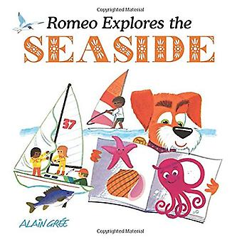 Romeo Explores the Seaside by Alain Gree - 9781787080010 Book