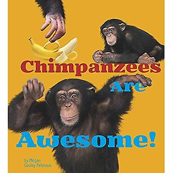 Chimpanzees Are Awesome! (Awesome African Animals!)