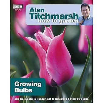 Comment Alan Titchmarsh jardin: bulbes de plus en plus comment jardin: bulbes de plus en plus