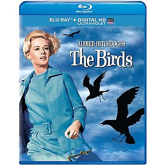 Birds [BLU-RAY] USA import