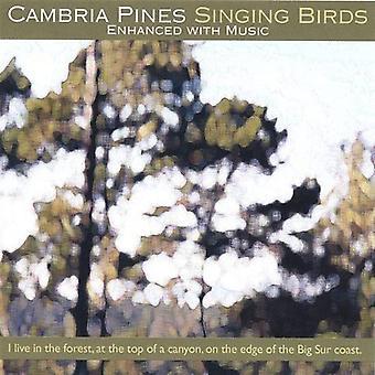 Cambria Pines Singing Birds - Cambria Pines Singing Birds [CD] USA import