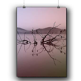 Matte or Glossy Poster with Lake Tree Photo Nature | Wellcoda | *q283