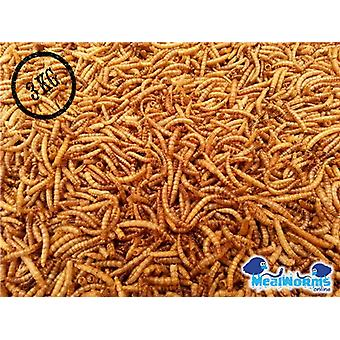 3Kg Dried Mealworms For Poultry