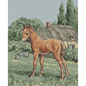 The Natural World Counted Cross Stitch Kit 8