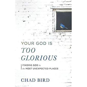 Din Gud är för härliga: Att hitta Gud i de mest oväntade platserna