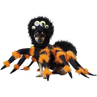 Costume del ragno domestico