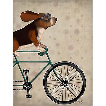 Basset Hound sur bicyclette Poster Print par Fab Funky (13 x 19)