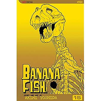 Banana Fish: Volume 15 (Banana Fish)