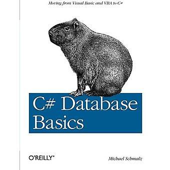 C# Datenbank Grundlagen