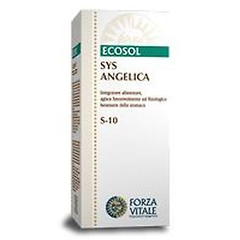 Forza Vitale Sys.angelica 50ml.