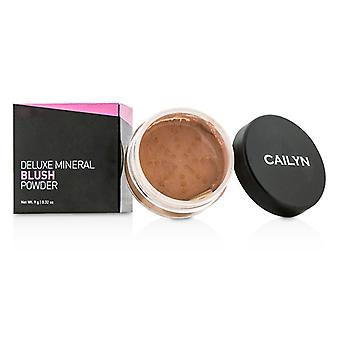 Cailyn Deluxe minerale Blush poeder - #02 verbrand oranje 9g/0.32 oz